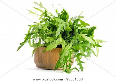 Fresh Arugula Beam In Wooden Salad Bowl Isolated On White Background