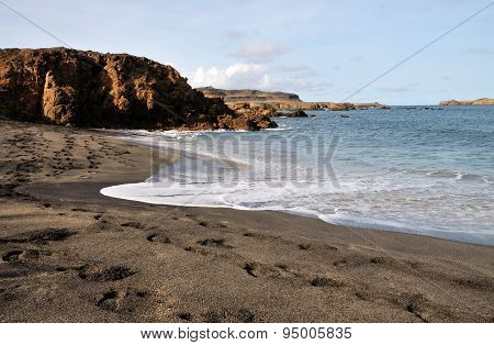 Foamy Waves Wash The Beach
