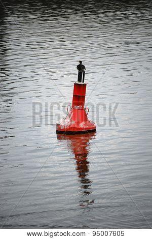 Cormorant on buoy