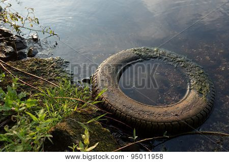 Car Tire In The Water
