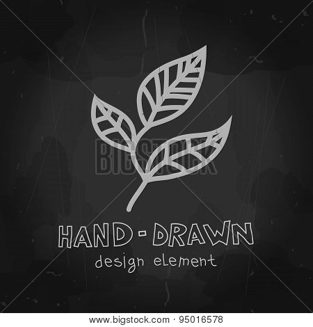 Vector tea leaf chalkboard drawing on blackboard background. Han