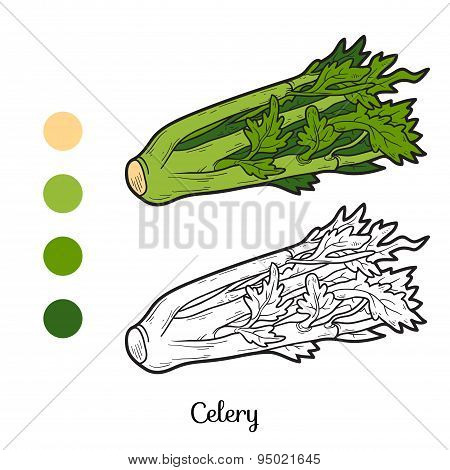 Coloring Book: Fruits And Vegetables (celery)