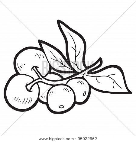 Coloring Book: Fruits And Vegetables (cranberries)