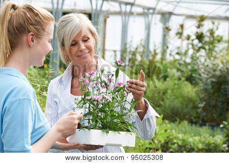 Woman Asking Staff For Plant Advice At Garden Center