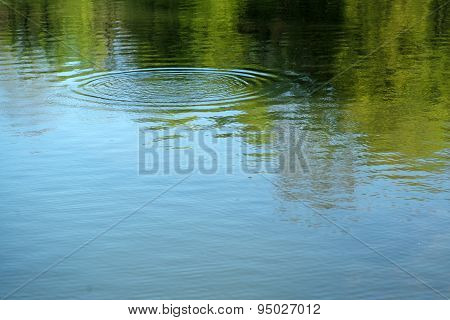 Mirror Pond And Circles On Water