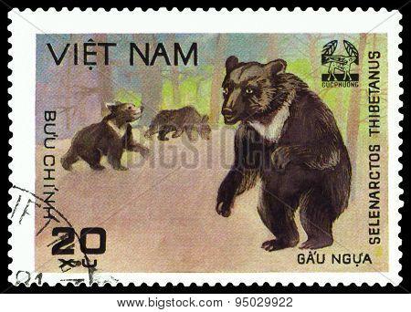 Vintage  Postage Stamp.   Himalayan Bear.