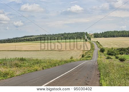 The Asphalt Road