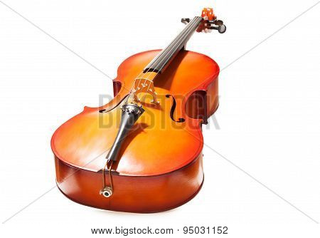 Violoncello in full length on the white background