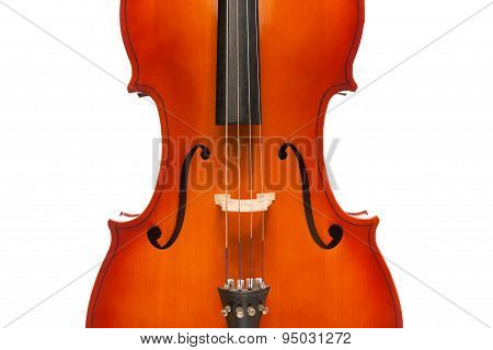 Beautiful violoncello body in vertical position on the white background