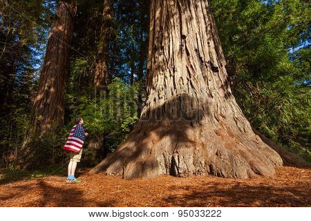 Man with US flag on shoulders stands near big tree