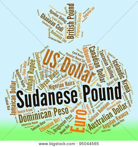 Sudanese Pound Means Worldwide Trading And Coinage