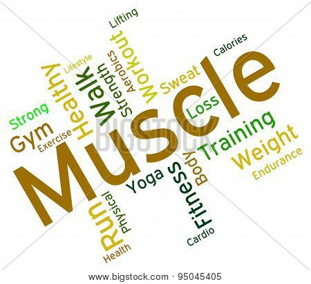 Muscle Words Shows Weight Lifting And Dumbbell