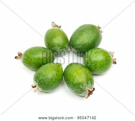 Tropical Fruit Feijoa Isolated On White Background