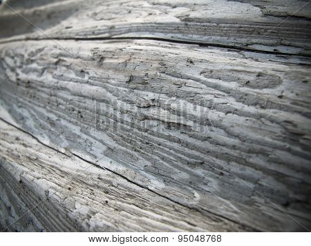 Weathered log