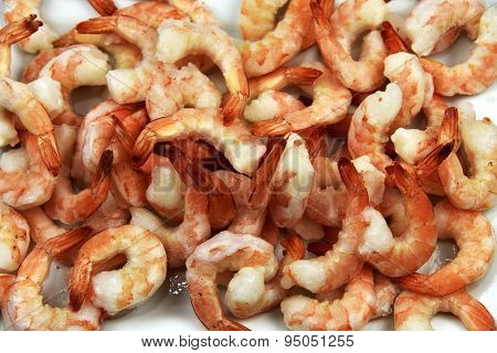 Jumbo Shrimp Close-up