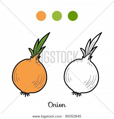 Coloring Book: Fruits And Vegetables (onion)