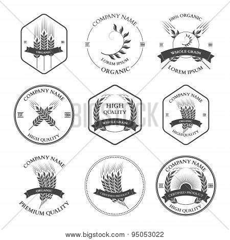 Ears of wheat and rye set labels, badges