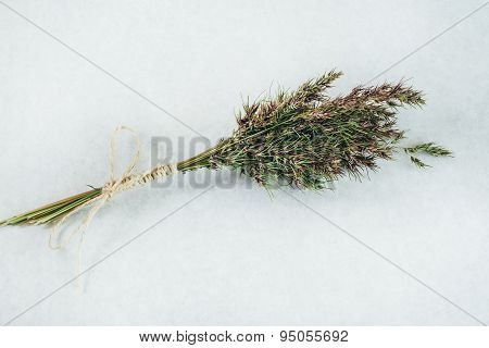 Fresh bouquet of Herbs on the white paper