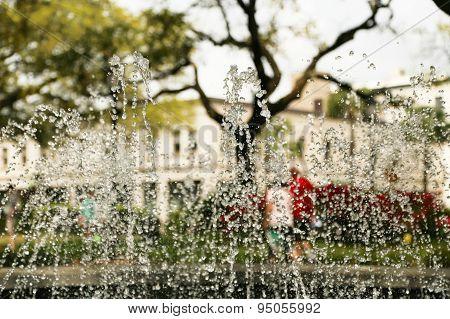 Water Fountain on a Savannah Square