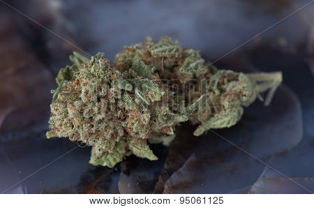 Deep Sleep Medical Marijuana Macro