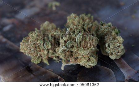 Deep Sleep Medical Marijuana