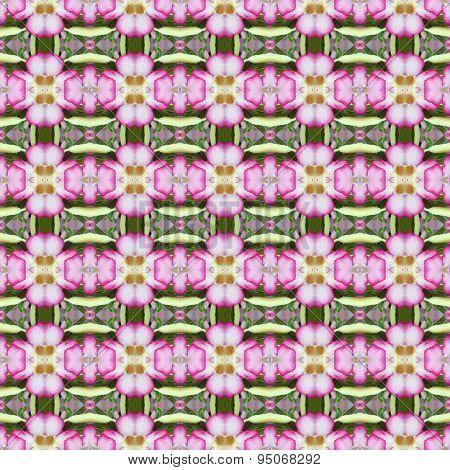 Pentagram Flowers, Flowers Into Bushes Seamless