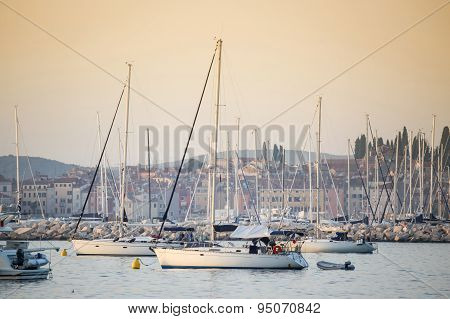Sailboats In Harbour
