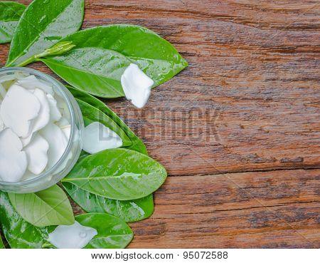White Gardenia Jasminoides Flower