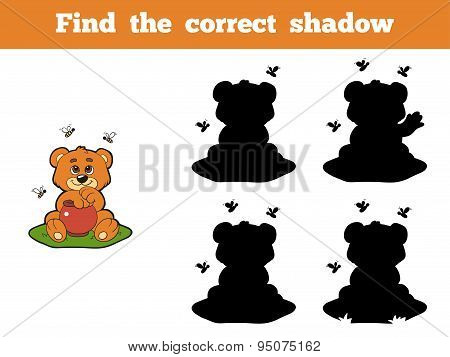 Find The Correct Shadow (bear And Bees)