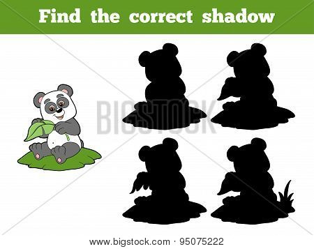 Find The Correct Shadow (panda And Leaf)