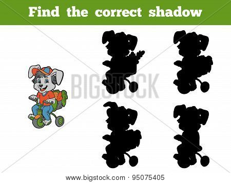 Find The Correct Shadow (rabbit And Bicycle)