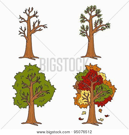 Four Seasons, vector set of trees