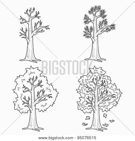 Coloring book (Four Seasons), vector set of trees
