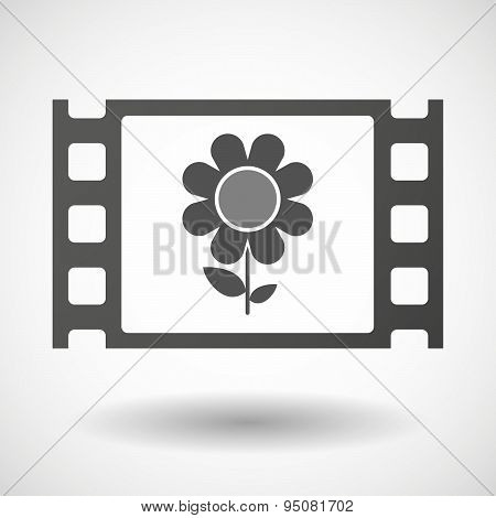 35Mm Film Frame With A Flower