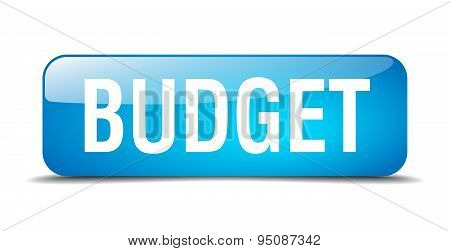 Budget Blue Square 3D Realistic Isolated Web Button