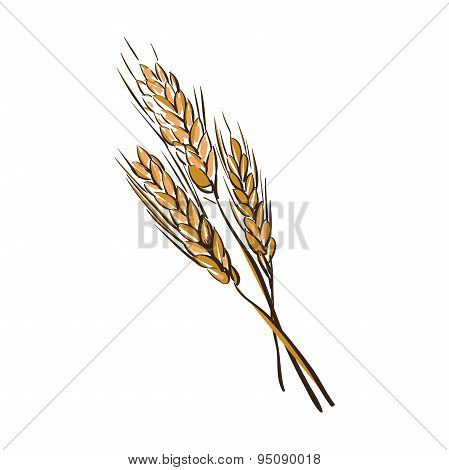 doodle wheat spikelets