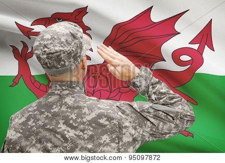 Soldier In Hat Facing National Flag Series - Wales