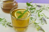picture of mints  - Cold mint tea with lemon on a table with mint plant honey and dipper spoon - JPG
