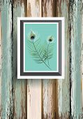 peacock feater  on wood background poster
