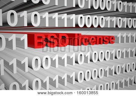 BSD license in the form of binary code, 3D illustration