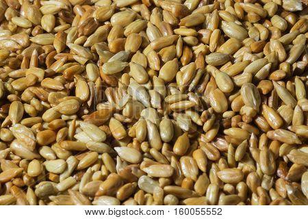 Roasted sunflower seeds. Golden seeds. Background of sunflower seeds.