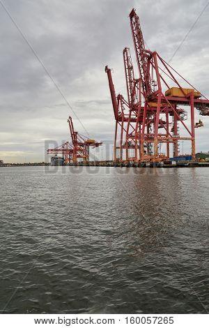 Industrial docks with huge cranes