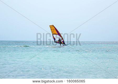 Windsurfer at Aruba island on the Caribbean Sea