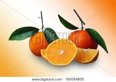 Image of an orange studio isolated on orange background