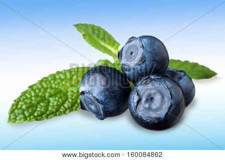 Blueberries very close studio isolated on white background