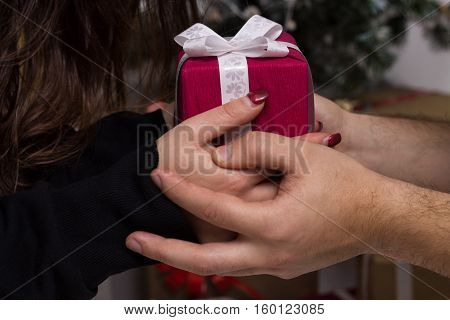 Closeview of hands of man giving a Christmas gift to girlfriend. Decorated christmas tree on background