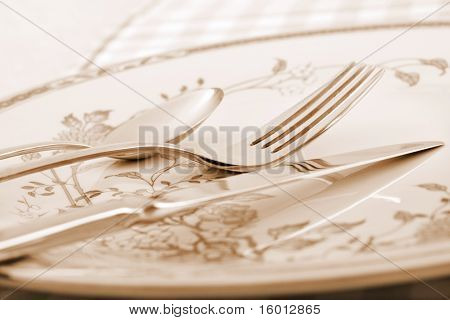 Elegant Table Setting In Sepia Tone