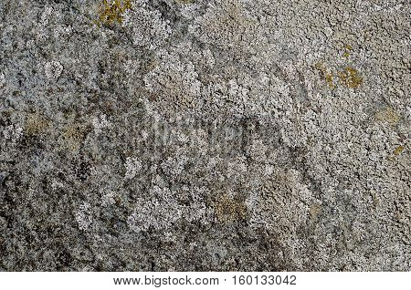 Texture of uneven grey rock surface with lichen
