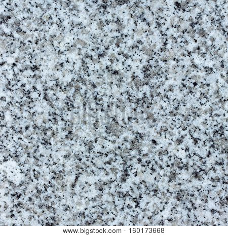 Natural polished granite texture material gray white