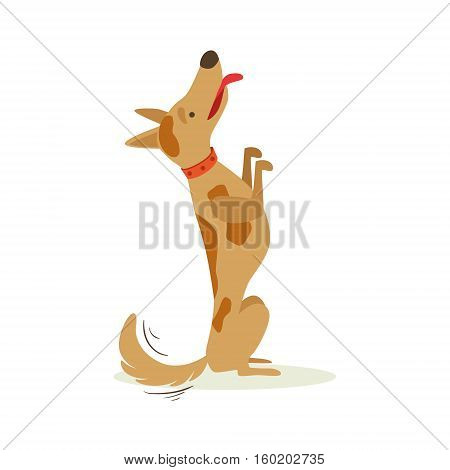 Brown Pet Dog Sitting Begging For Treat, Animal Emotion Cartoon Illustration. Cute Realistic Active Hound Vector Character Everyday Life Scene Emoji.